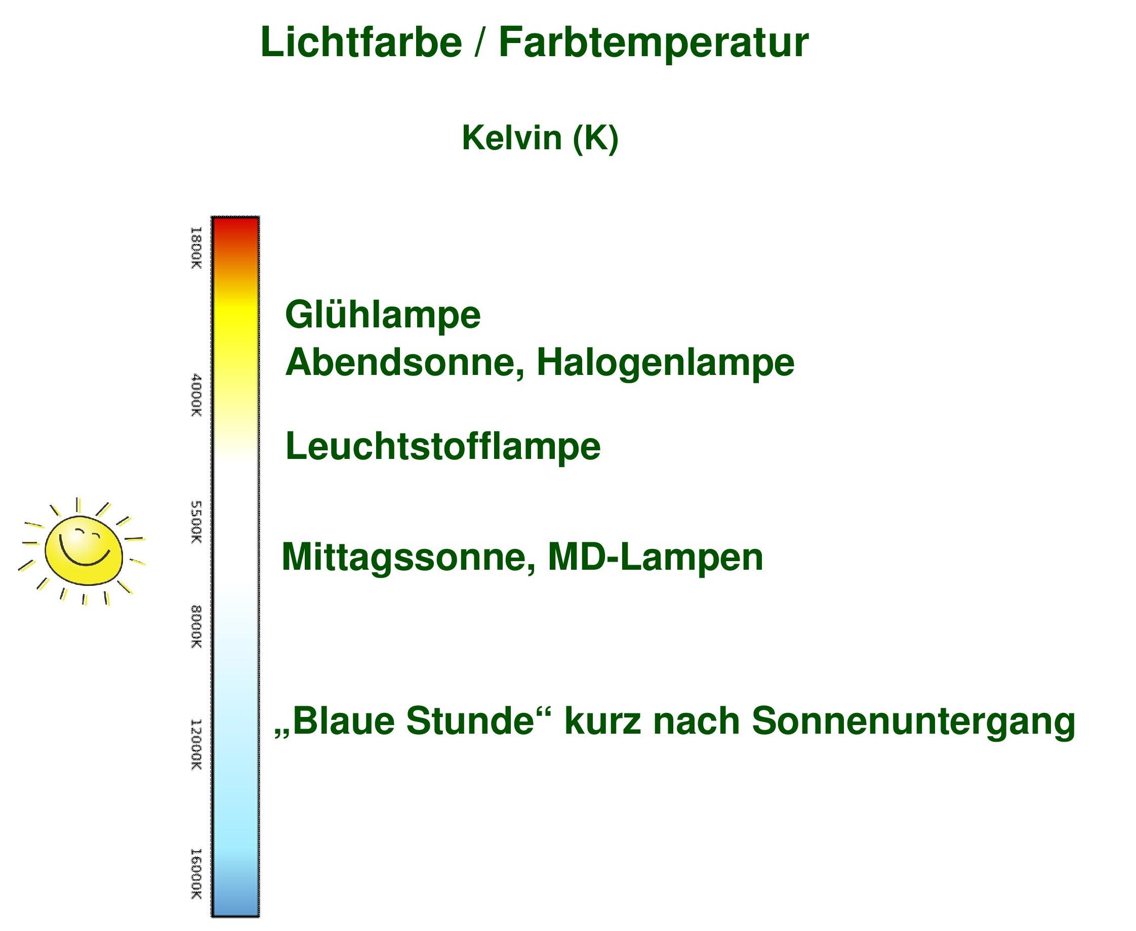 """Unterschied zwischen """"desert"""" und """"jungle"""" UV-Lampen für Reptilien"""