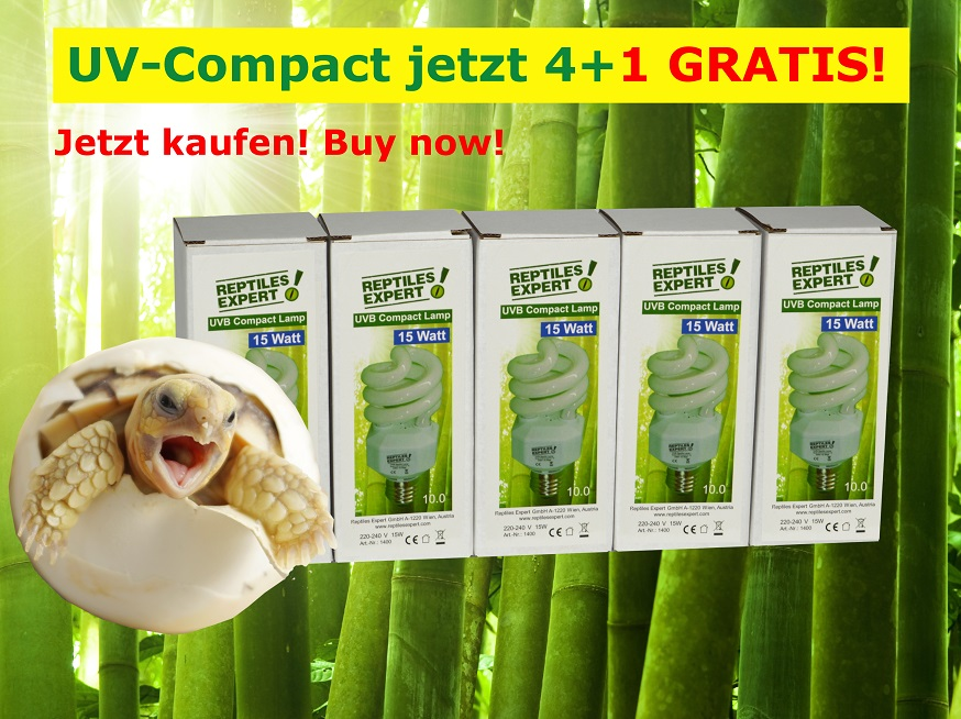 https://www.reptilesexpert.com/de/hier-uvb-lampen-zu-bestpreisen-kaufen/uvb-compact.html