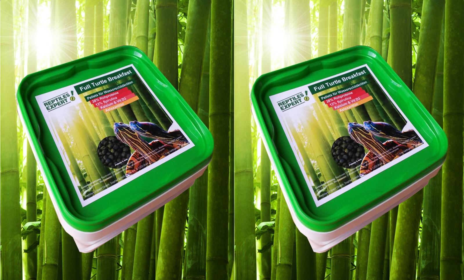 Illuminazione rettili: comprare online un terrario per anfibi e