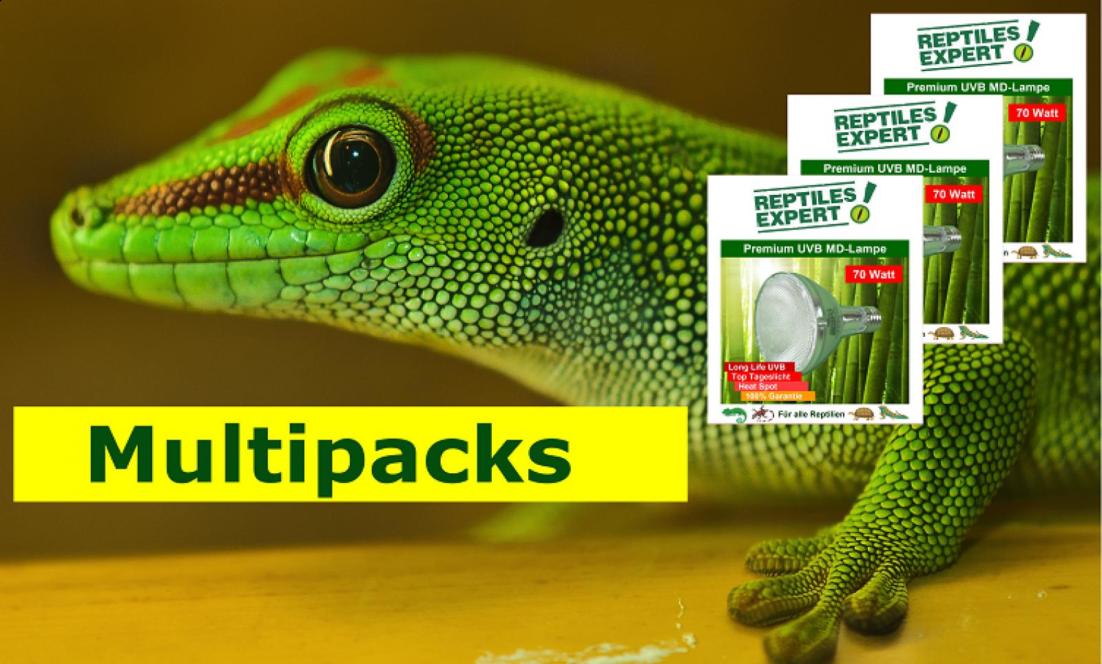 https://www.reptilesexpert.com/de/hier-uvb-lampen-zu-bestpreisen-kaufen/preisgünstige-multipacks-kaufen.html
