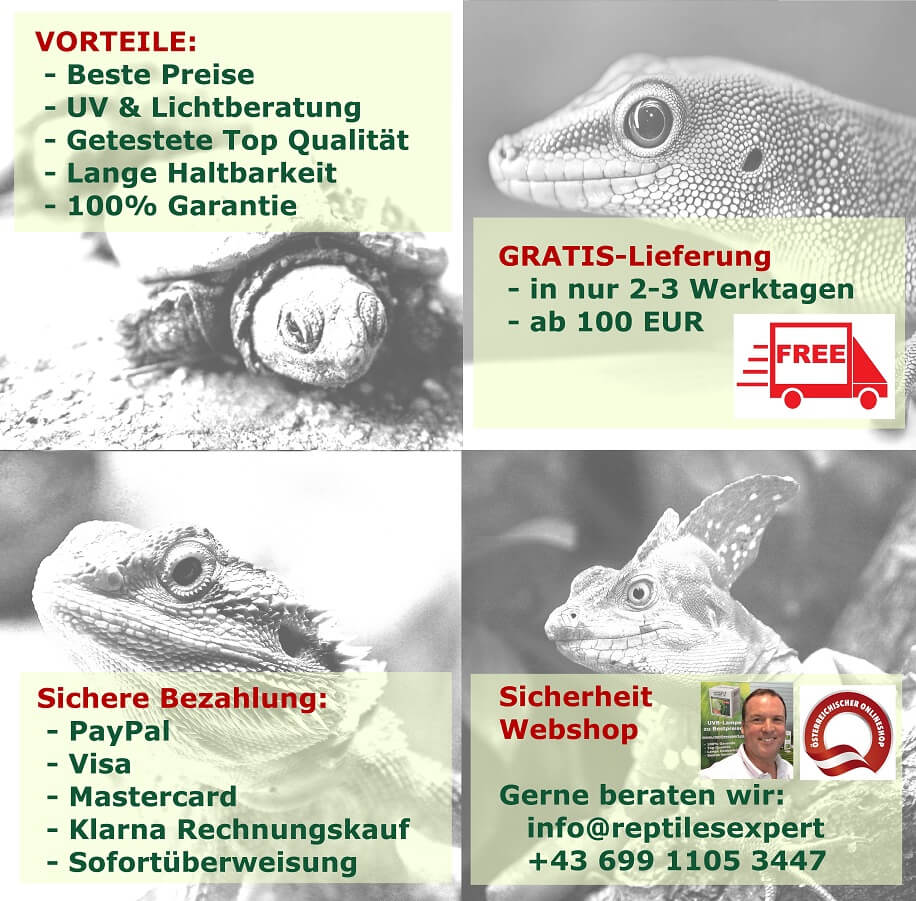 2021 Block neu Vorteile Reptiles Expert UV Lampen