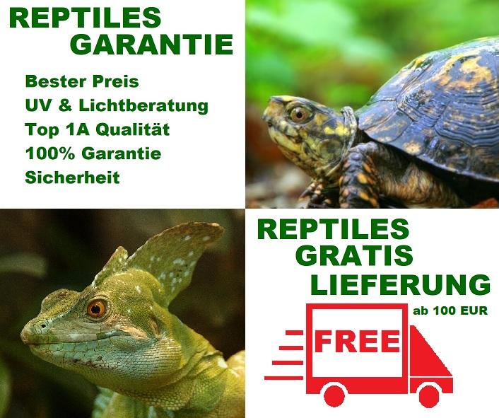UV Lampen Garantie von Reptiles Expert