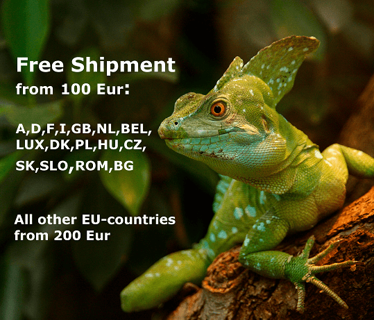 uv lamps free shipping reptiles terrarium