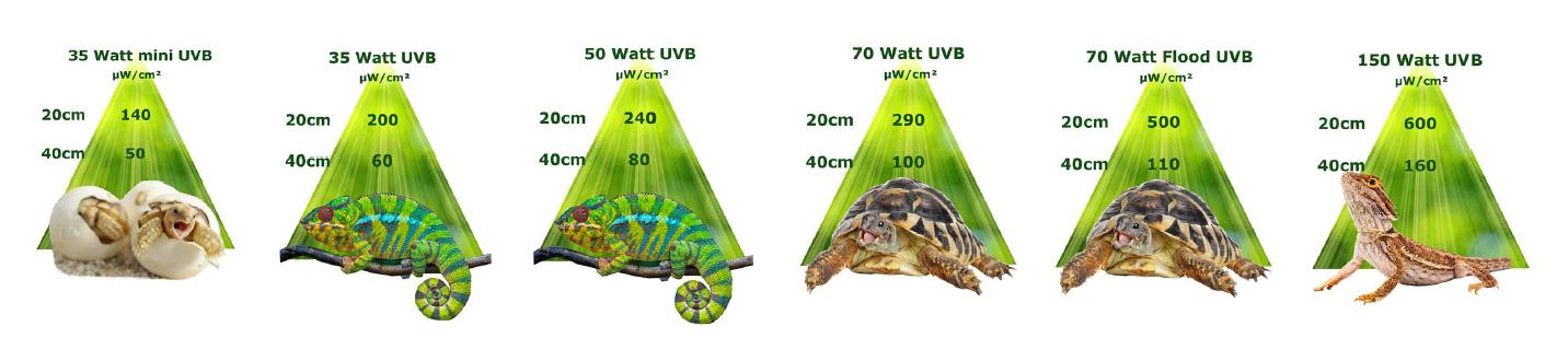 UVB Werte neuwertige Terrariumlampen