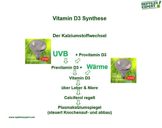 Vitamin D3 Prozess