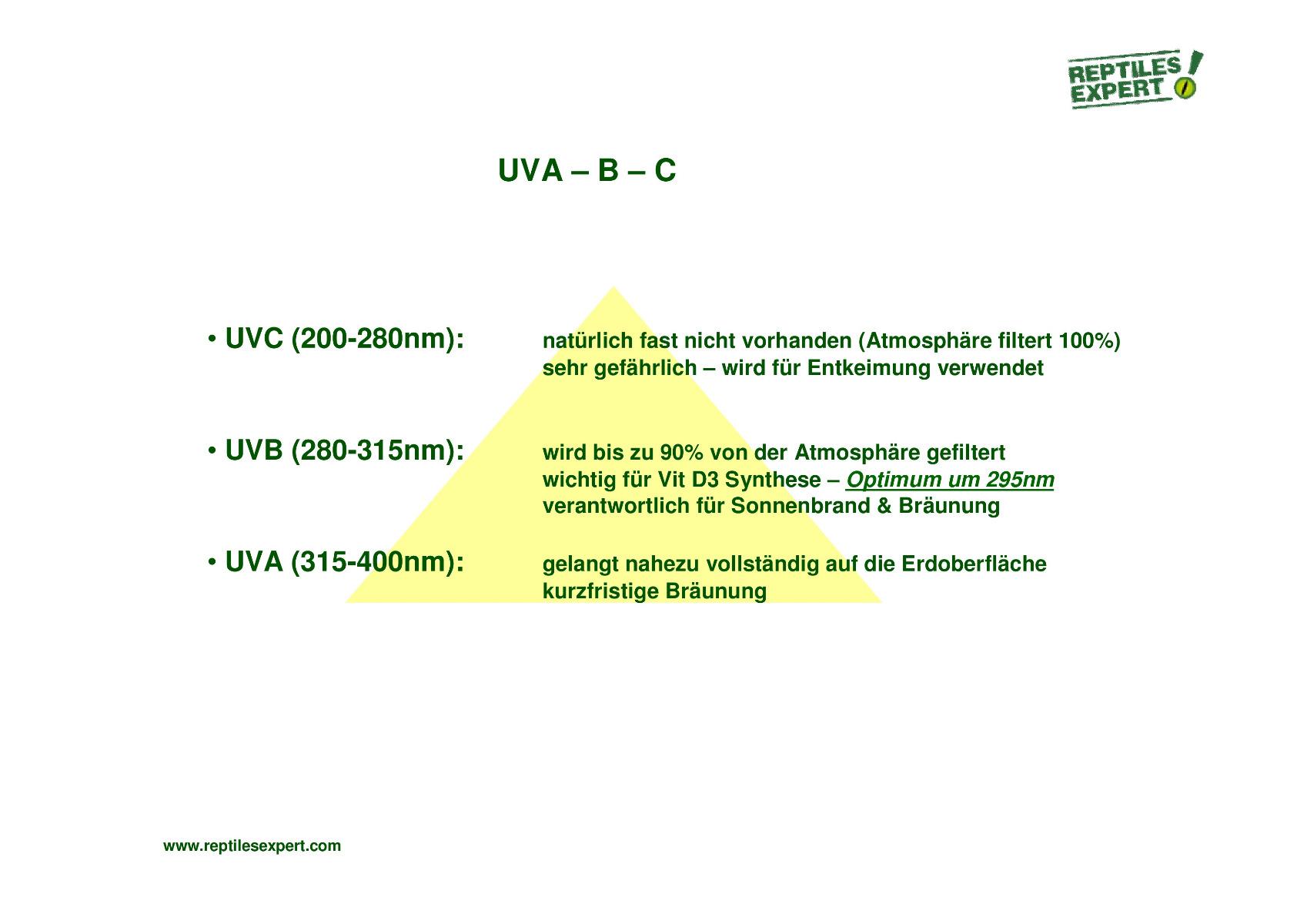 Reptiles Expert Info zu UV Licht